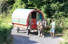 Holidays in Ireland, Wonderley Wagon