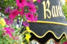 Backroads Tour in Irland | Blumen in Kinsale