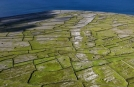 Gruppenreise zu den Aran Islands, Dun Aengus, Inis Mor
